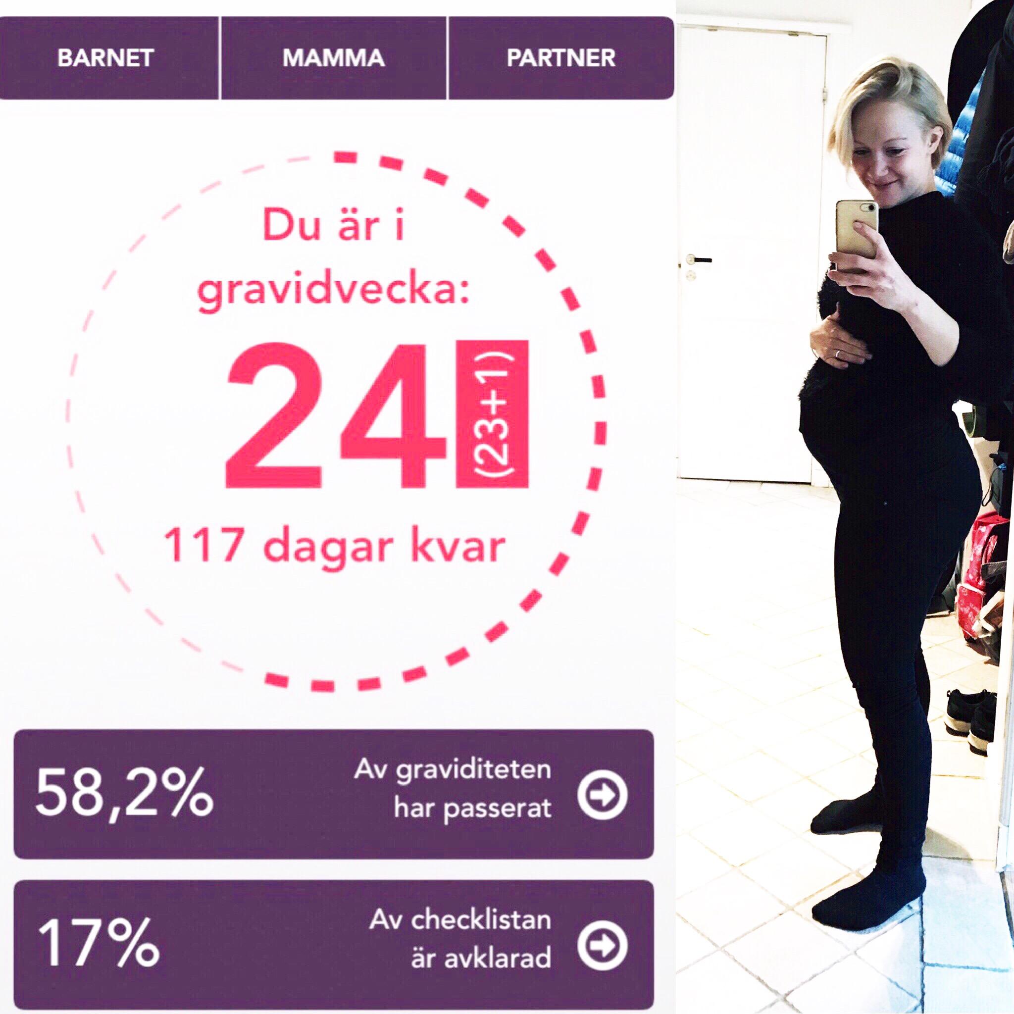 gravid vecka 24