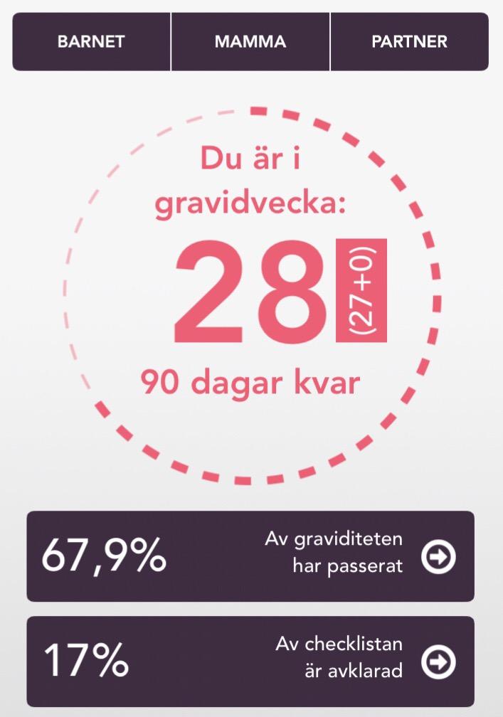 gravid vecka 28