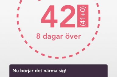 graviditetsvecka 42