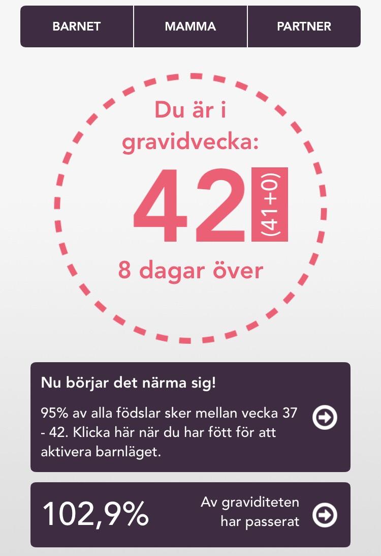 gravid vecka 42